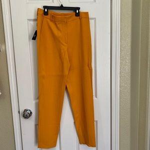 Massimo Dutti Pants & Jumpsuits - NWT. Massimo Dutti Yellow pants Sz 6